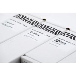 Printhead 300 dpi Zebra ZT410